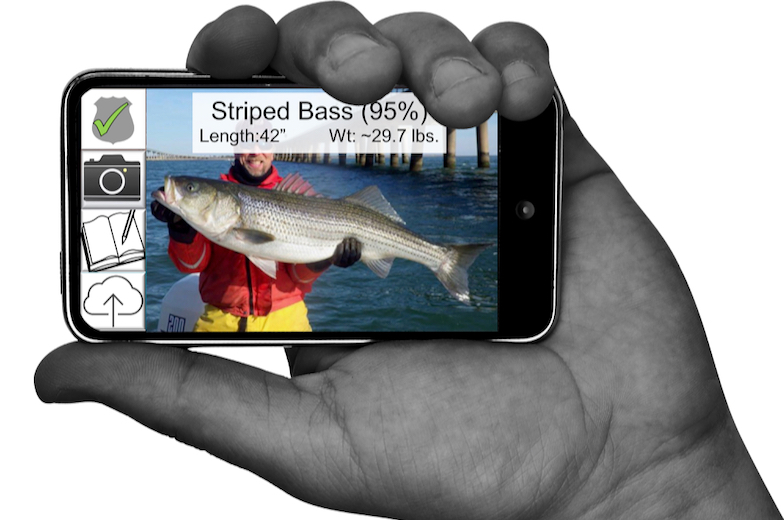 RecFish Cell-phone App