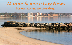 Marine Science Day News