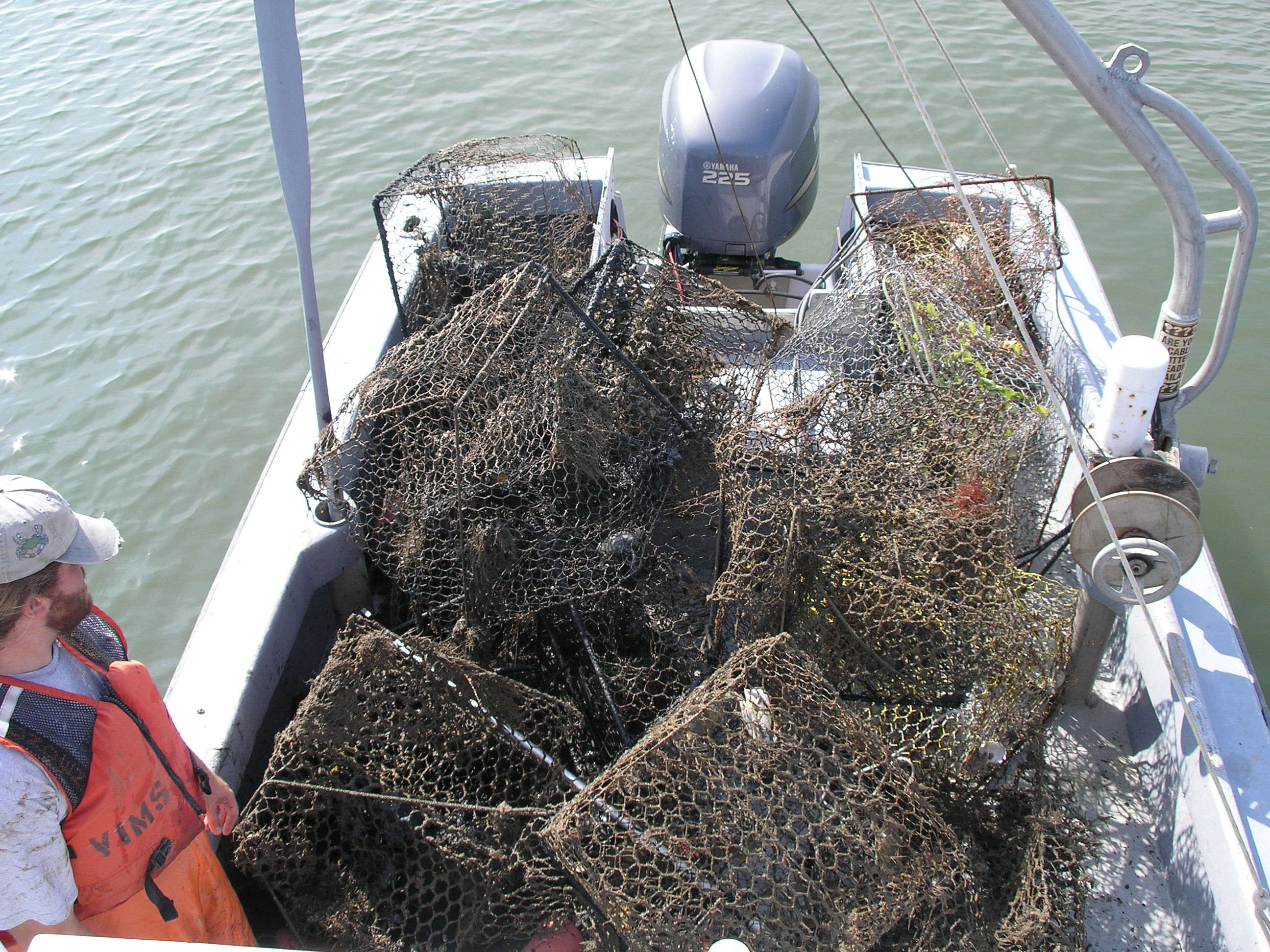 Boat Load of Crab Traps