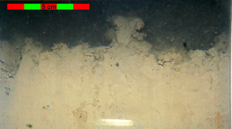 Sediment profile image