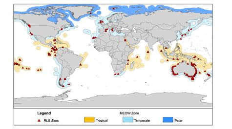 Global Fish Survey
