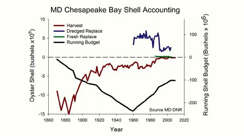 Shell Accounting
