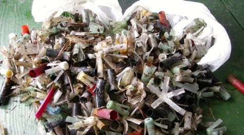 Shotgun wads and shells collected during a beach clean up. ©K. Havens/VIMS.