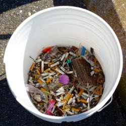 Cigarette butts are the most common item of beach litter.