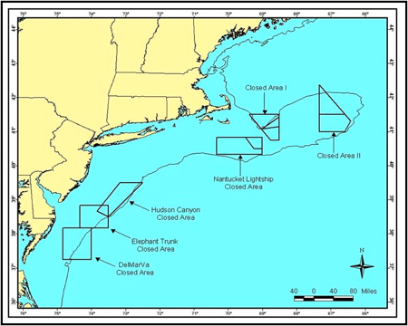 These areas are currently closed to scallop fishing.
