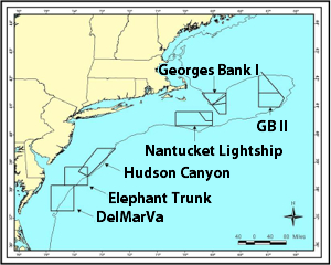 Map of scallop-management areas along the northeast Atlantic continental shelf.