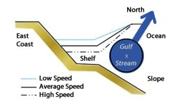 When the northward flowing Gulf Stream slows down, sea level rises along the U.S. East Coast.Graphic adapted from Noble and Gelfenbaum via Sweet, Zervas, and Gill.