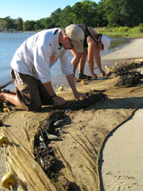 Leonard Machut (L) and Virginia Zakrzewski (R) pick through a representative catch on the shores of the Rappahannock River during the 2012 survey.