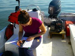 VIMS graduate student Gina Ralph collects data during her study of blue crabs and seagrass in Chesapeake Bay.
