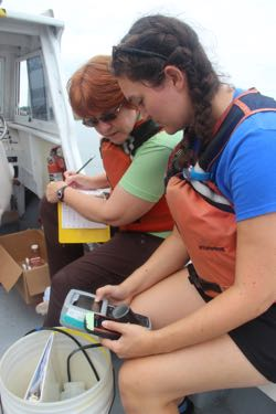 Professor Kim Reece and graduate student Sarah Pease collect water samples from an algal bloom in the York River.