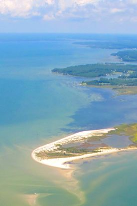 Virginia is home to a wide range of coastal habitats. Photo by Kim Reece/Bill Jones.