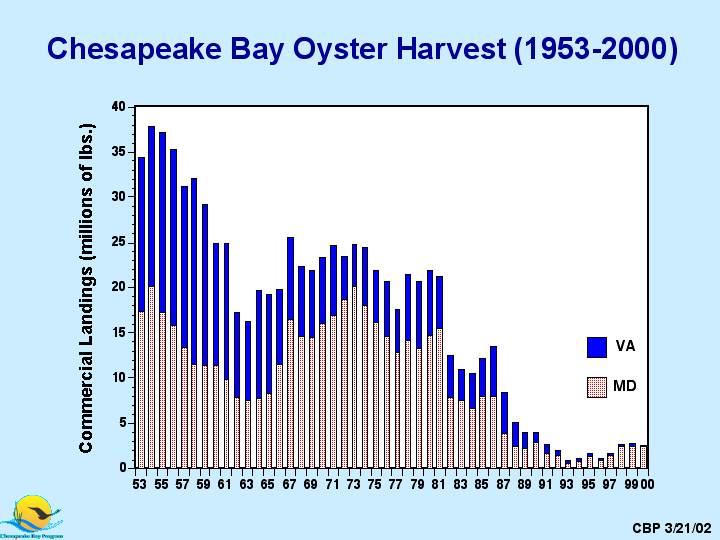 Research paper topics chesapeake bay